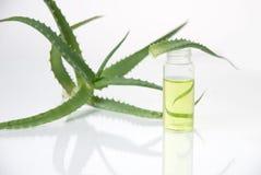 Estratto di piante. Chimica naturale. immagini stock libere da diritti