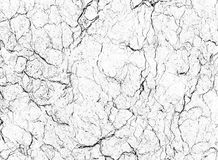 Estratto di pietra naturale del modello di struttura di marmo bianca del fondo Fotografia Stock Libera da Diritti