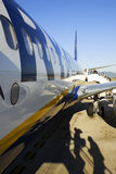 Estratto di Ryanair Immagini Stock