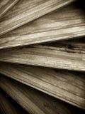 Estratto di una scala a chiocciola di legno Fotografie Stock Libere da Diritti