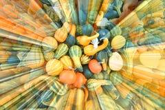 Estratto di varietà della zucca di autunno Immagine Stock