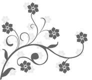 Estratto floreale Fotografia Stock