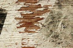 Estratto Gray Painted Wooden Background Parete verniciata Vecchio fondo di legno di struttura della parete immagini stock