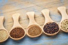 Estratto libero dei grani del glutine Immagini Stock Libere da Diritti