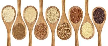 Estratto libero del grano del glutine Fotografia Stock Libera da Diritti