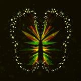 Estratto lucido della farfalla Fotografia Stock Libera da Diritti