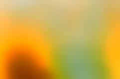 Estratto nel yeallow e nel verde Fotografia Stock