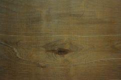 Estratto, struttura nel legno di un albero immagini stock libere da diritti