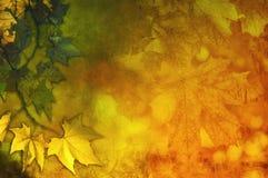 Estratto variopinto di autunno immagini stock