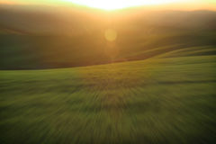 Estratto verde di luce solare e del prato Fotografia Stock Libera da Diritti