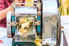 Estrazione del succo della canna da zucchero Immagine Stock