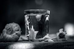 Estrazione di aglio o dell'allium sativum su una borsa dell'iuta Immagini Stock