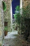Estreche la calle cobbled con las flores en el pueblo viejo Tourrettes Imagenes de archivo