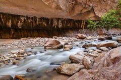 Estreitos em Zion National Park, EUA Fotos de Stock Royalty Free