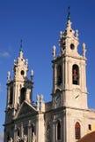 estrela базилики Стоковое Изображение RF