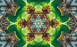 Estrela abstrata do multifinal com testes padrões. Imagem de Stock Royalty Free