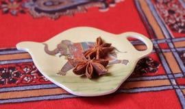 Estrela Anise Spice Imagem de Stock Royalty Free