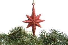Estrela da árvore de Natal Imagem de Stock