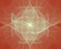 Estrela da flor Fotografia de Stock