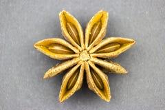 Estrela do anis com oito pétalas imagens de stock