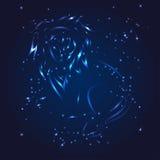 Estrela do brilho do whith do zodíaco do Leão Fotografia de Stock Royalty Free