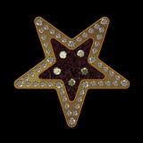 Estrela do diamante Fotos de Stock Royalty Free