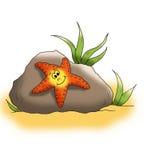 Estrela do mar Imagens de Stock