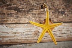 Estrela do mar amarela e suporte chave do escudo Fotos de Stock