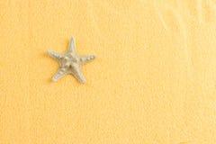 Estrela do mar bonita na opinião superior da areia alaranjada decorativa imagem de stock
