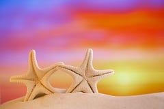 Estrela do mar branca com o céu do nascer do sol na praia branca da areia Imagem de Stock