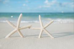 Estrela do mar branca na praia branca da areia, com céu do oceano e seascape Fotografia de Stock