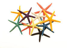 Estrela do mar colorida foto de stock