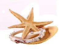 A estrela do mar e o Shell no fundo branco Fotos de Stock