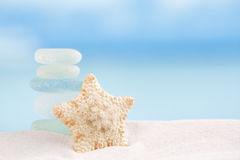 Estrela do mar rara da água profunda com o oceano do vidro do mar Imagens de Stock