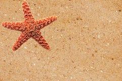 Estrela do mar vermelha sobre a areia amarela Fotografia de Stock Royalty Free