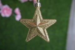 Estrela do Natal do ouro fotografia de stock royalty free