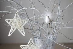 Estrela do Natal que pendura no ramo Foto de Stock