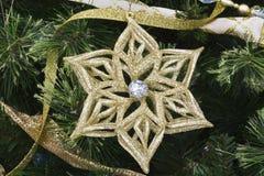 Estrela e pinho do Natal II Foto de Stock