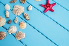 Estrela e shell de mar no fundo azul de madeira Fotos de Stock