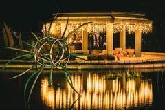 Estrela na lagoa imagem de stock royalty free