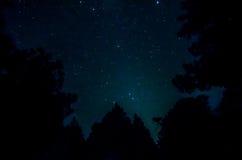 Estrela no céu imagens de stock