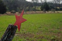 Estrela solitária oxidada de texas fotografia de stock
