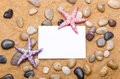 Estrelas de mar Fotografia de Stock Royalty Free