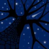Estrelas de noite ilustração royalty free