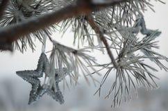Estrelas de prata na árvore festiva Foto de Stock Royalty Free