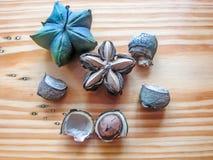Estrelas do amendoim do Inca Imagem de Stock