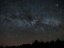 Estrelas do céu noturno e da Via Látea, constelação do Cygnus e do Lyra sobre a floresta imagens de stock
