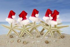Estrelas do mar com chapéu de Santa e conchas do mar na praia Foto de Stock Royalty Free