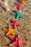 Estrelas do mar na praia Fotos de Stock Royalty Free