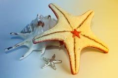 Estrelas e listras Foto de Stock